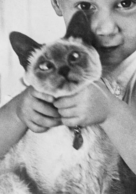 John Baldessari. Child with Kitten 2015. Siebdruck 67 x 50cm. BILD