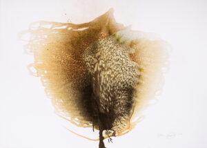 Otto Piene Unknown Tree Reliefsiebdruck 2000 2014