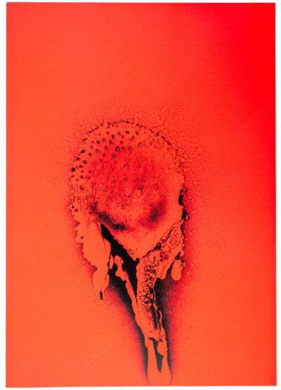 Otto Piene Roter Sonnentau Serigrafie 1972
