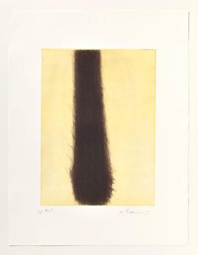 Arnulf Rainer, Vertikale Überdeckung, 1971/2002