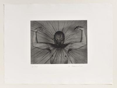 Arnulf Rainer, Der Löwe, 1972-73/1975