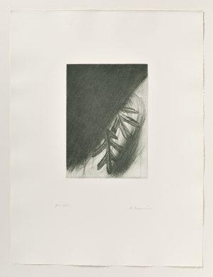Arnulf Rainer, Eichenlaub from Jospeh Beuys Portfolio, 1986
