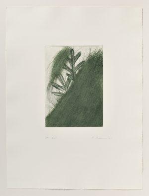 Arnulf Rainer, Eichenlaub from Jospeh Beuys Portfolio (Variante), 1986