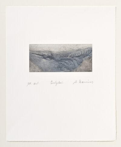 Arnulf Rainer Delphin Radierung 1993