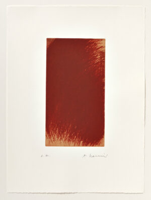 Arnulf Rainer Metamorphose Radierung 2001